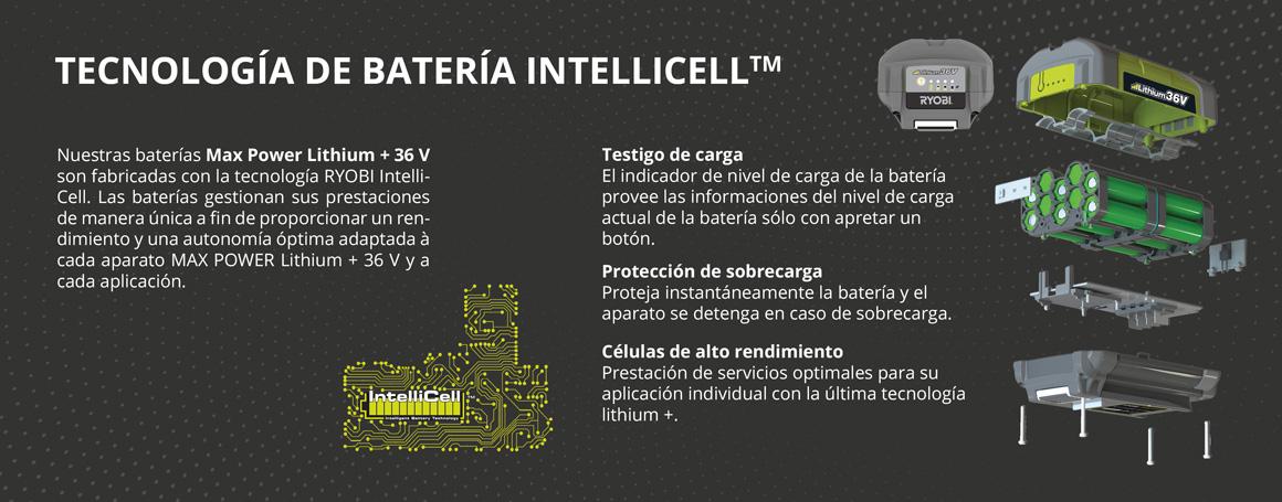 Tecnología de batería Intellicell TM