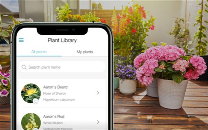 Libreria delle piante
