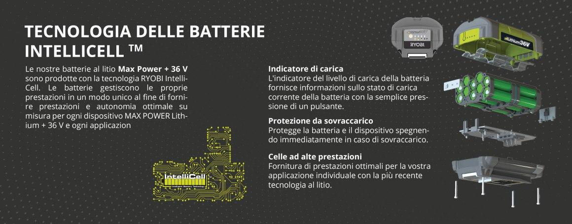 Tecnologia delle batterie Intellicell TM